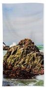 I Sea Said The Starfish Beach Towel