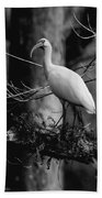 Ibis In Black And White  Beach Towel