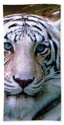 Ice Blue Eyes Of The Tiger Beach Towel