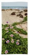 Ice Plant Booms On Pebble Beach Beach Towel