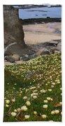 Ice Plants On Moss Beach Beach Sheet