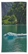 Ice Tracy Arm Alaska Beach Towel