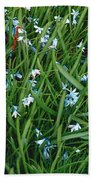 Iceblue Squill Beach Towel