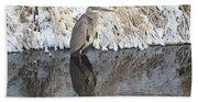 Iced Heron Beach Towel