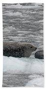 Iced Mother Beach Towel