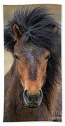 Icelandic Equine Beauty.. Beach Towel