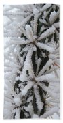 Icy Cactus Beach Towel