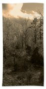 Icy Trees In Sepia Beach Towel