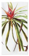 Ieie Plant Art Beach Towel