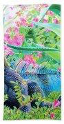 Iguana Beach Sheet