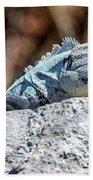 Iguana In Ek Balam Beach Towel