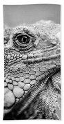 Iguana Stardust Beach Towel