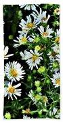 Illinois Wildflowers 1 Beach Towel