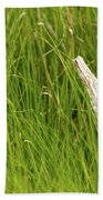 Illusions In The Grass Beach Towel