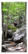 Image Included In Queen The Novel - Rocks At Smugglers Notch Beach Towel