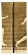 Image Sequence From Animal Locomotion Series Beach Towel