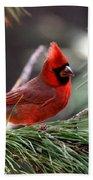 Img_0565-004 - Northern Cardinal Beach Towel
