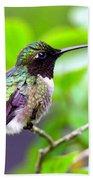 Img_3524-002 - Ruby-throated Hummingbird Beach Towel