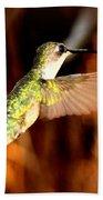 Img_4625 - Ruby-throated Hummingbird Beach Towel