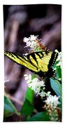 Img_8960 - Tiger Swallowtail Butterfly Beach Towel