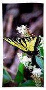 Img_8960 - Tiger Swallowtail Butterfly Beach Sheet
