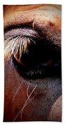 Img_9984 - Horse Beach Towel