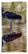Immature White Ibis At Sunrise Beach Towel