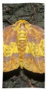Imperial Moth Beach Towel