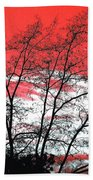 Impressions 6 Beach Towel