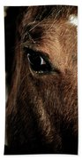 In A Horse's Eye Beach Towel