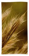 In An Autumn Field - Golden Macro Beach Towel