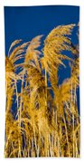 In And Out Of Focus Beach Towel