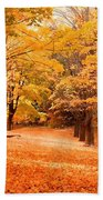 In Autumn Beach Towel