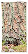 In The Forest Art Series - Tree Bark Patterns 1  Beach Towel