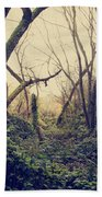 In The Forest Of Dreams Beach Towel