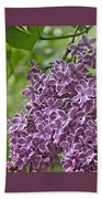 In The Garden. Lilac Beach Towel