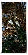In The Shade Of A Florida Oak Beach Towel