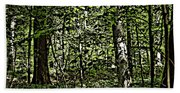 In The Woods Wc Beach Towel