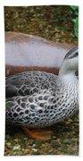 Indian Spot-billed Duck Beach Towel