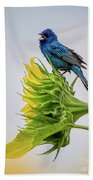 Indigo Bunting Sunflower Beach Towel