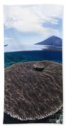 Indonesia, Coral Reef Beach Towel