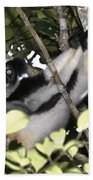 Indri Indri Beach Towel