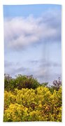 Infinite Gold Sunlight Landscape Beach Towel