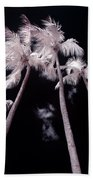 Infrared Palm Trees Beach Towel