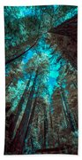 Infrared Redwood Beach Towel