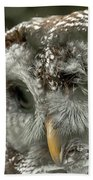Injured Owl Beach Towel