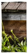 Insect - Spider - Charlottes Web Beach Towel by Mike Savad