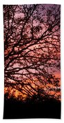 Intense Sunset Tree Silhouette Beach Towel