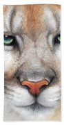Intensity - Mountain Lion - Puma Beach Towel by Peter Williams