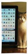 Desktop Security Beach Sheet